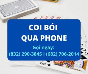 Picture of COI BÓI QUA ĐIỆN THOẠI TRÊN 50 TIỂU BANG